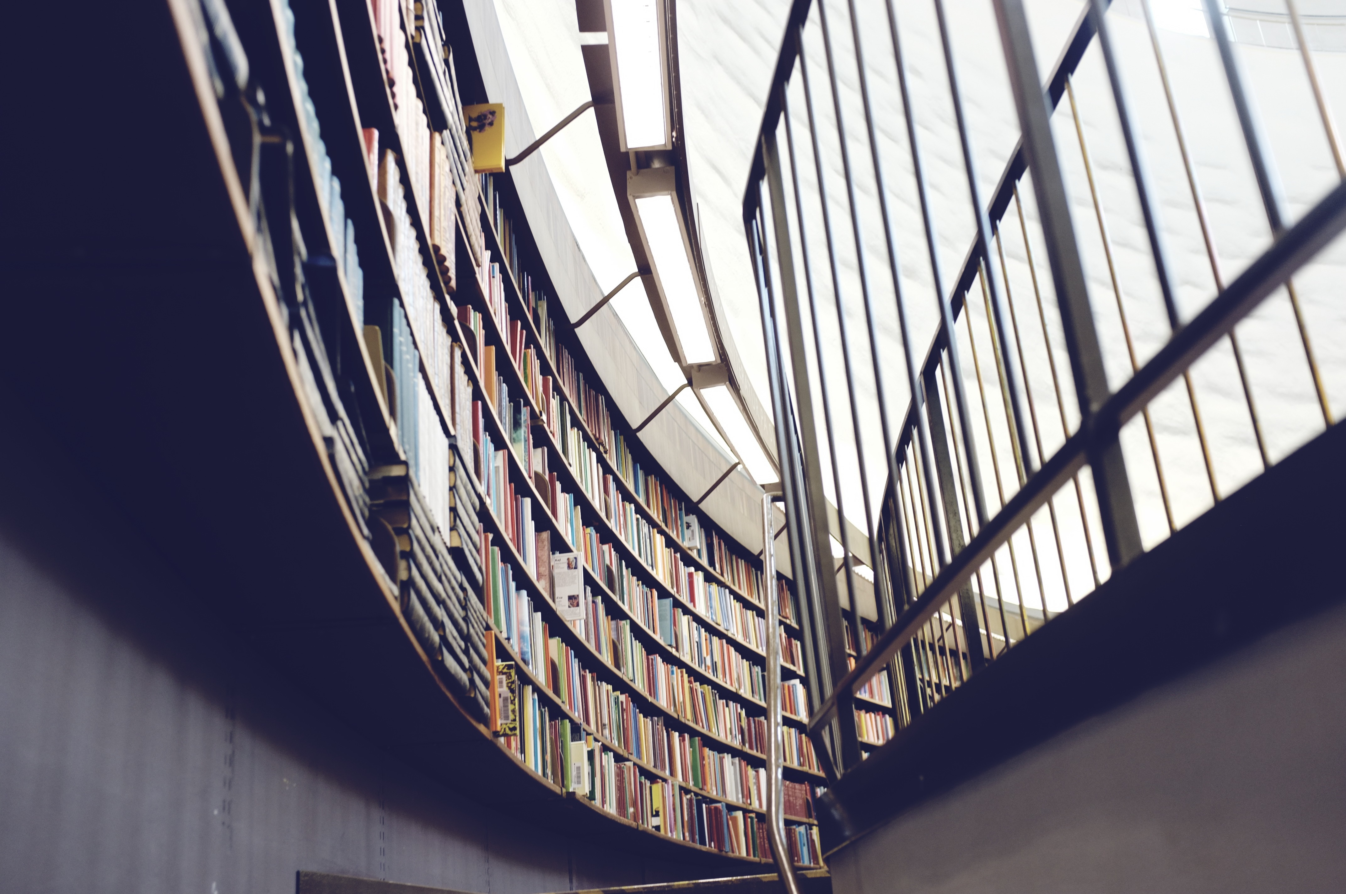 Lots of books on display in a huge, curved shelf in a modernist library